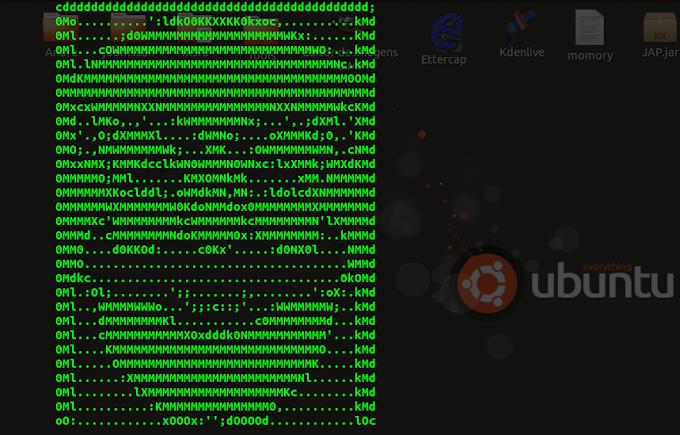 Setoolkit ubuntu - Something went wrong: No module named pexpect