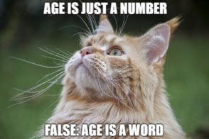 MOST VIRAL FUNNY HAPPY BIRTHDAY MEMES EVER