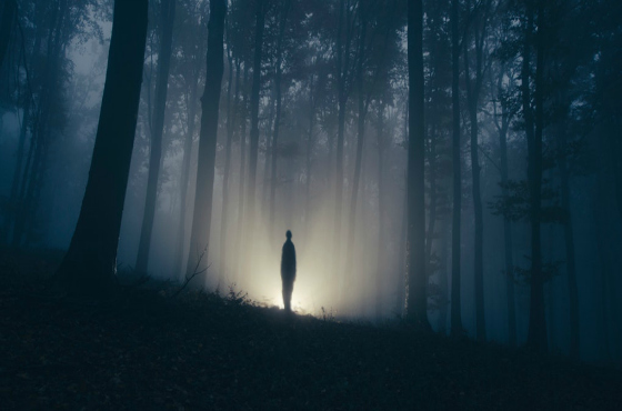Humanoid Horror: What Are People Seeing Out There?