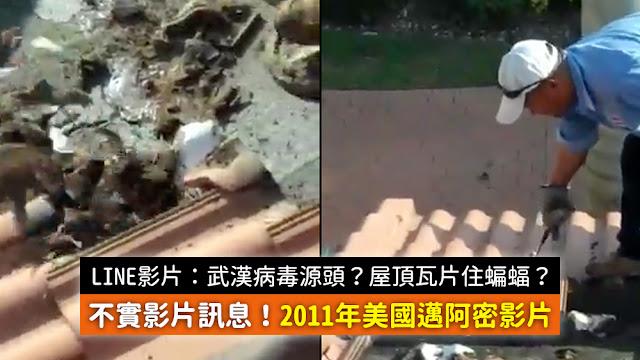 湖北武漢 謠言 蝙蝠 屋頂瓦片 病毒源頭