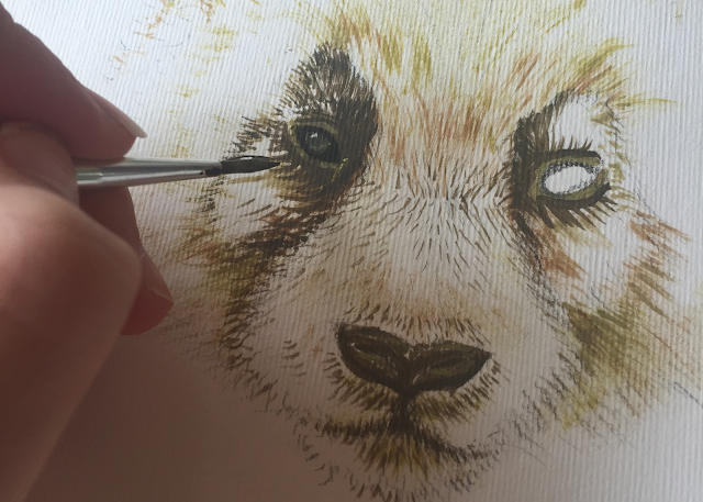 Panda face acrylic painting illustration