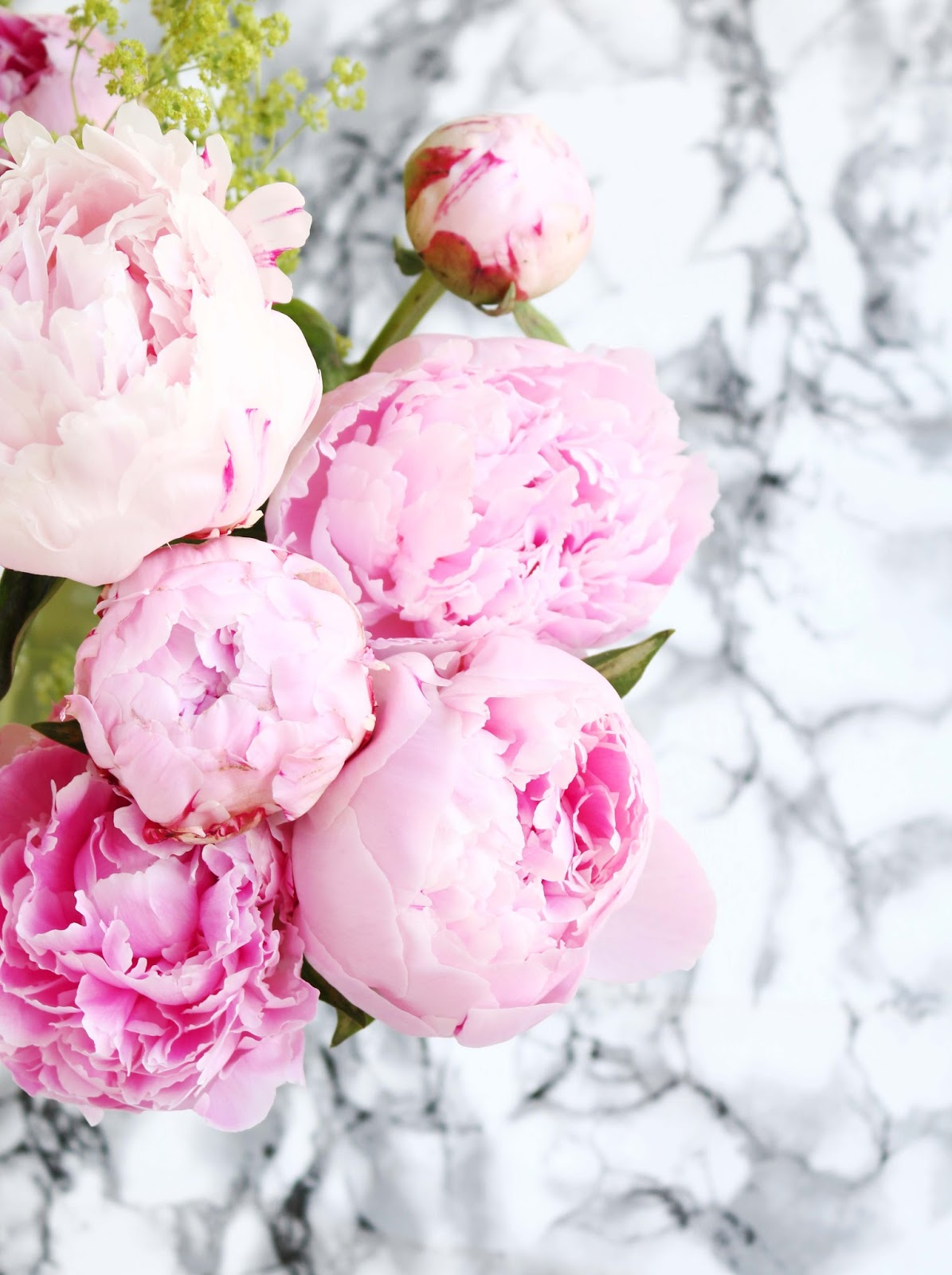 Lifestyle, lists, Summer, catch up, Chatty, peonies, things im looking forward to in June, June goals, peony, dizzybrunette3