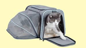 Cat Travel Cages - Comfort and Peace of Mind For You and Your Pet