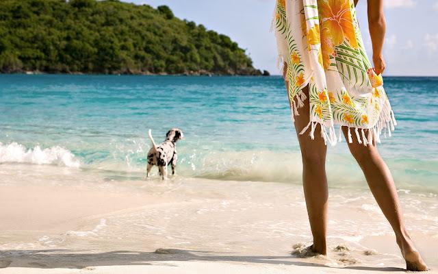 Vrouw en hond op het strand in de zomer