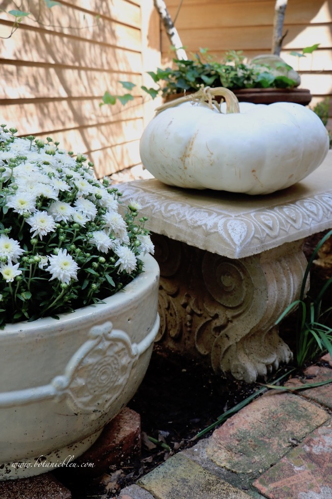 fall front entry garden decorating ideas with white pumpkin with twisty stem
