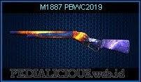 M1887 PBWC2019