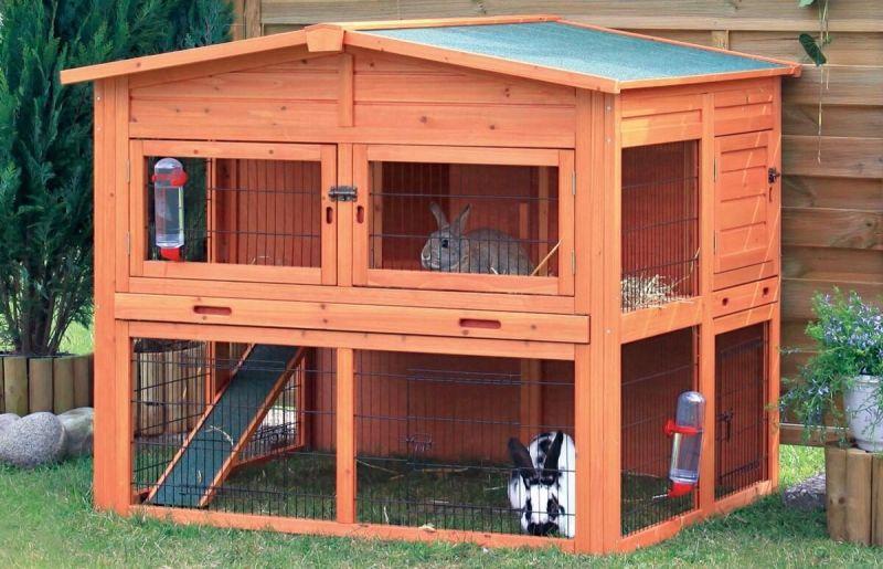 Kandang kelinci sederhana di luar ruangan
