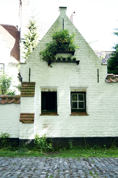 Blog & Fotografie by it's me! - weißes Backsteinhaus mit begrüntem Giebel in Brügge, Belgien