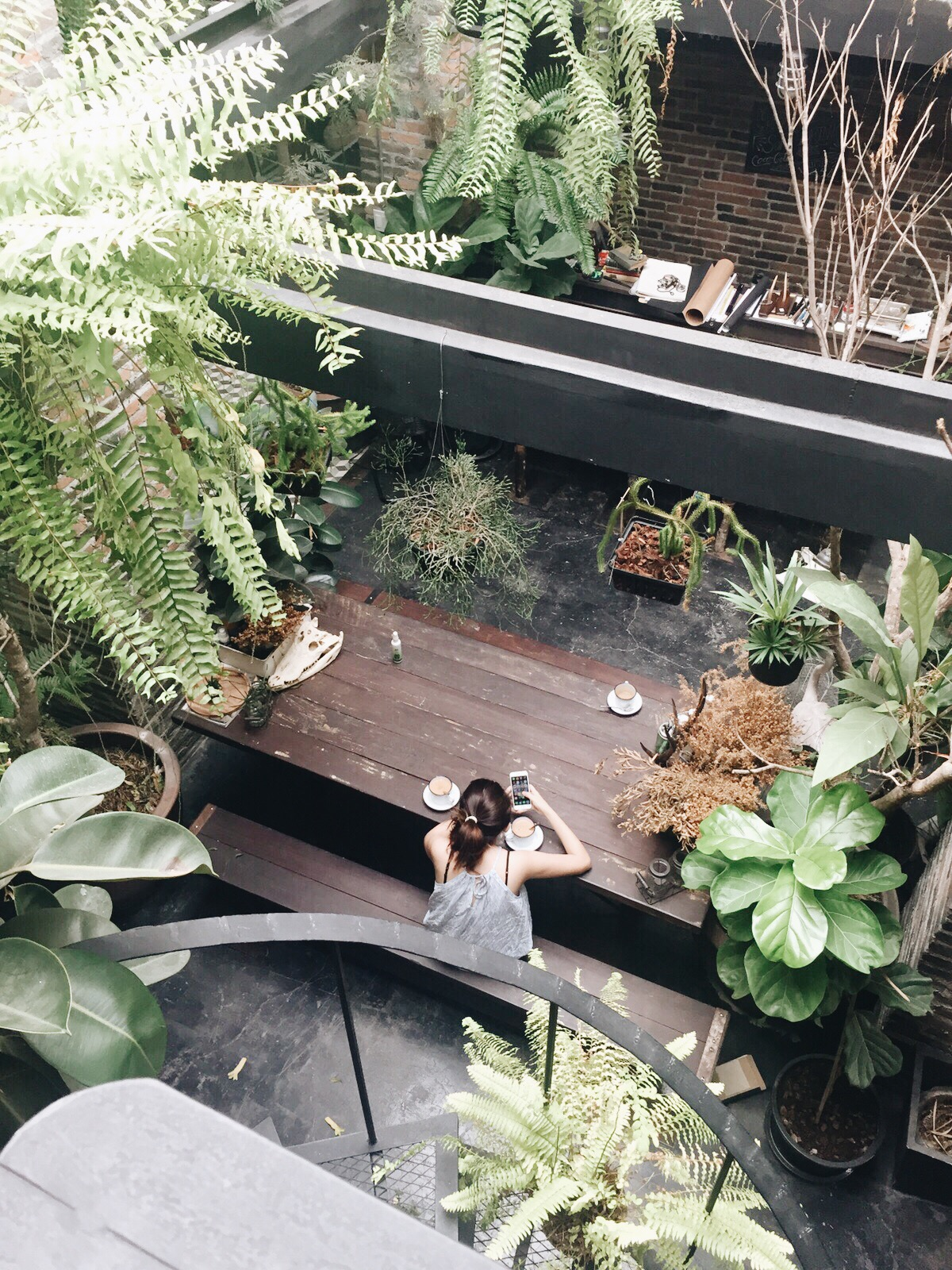 Bangkok Trip! Travelogue