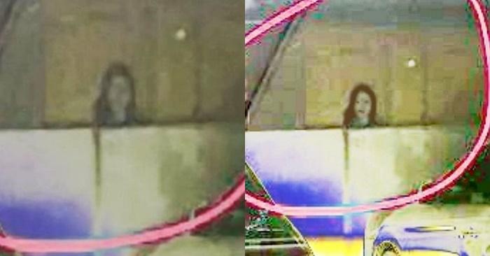 이미지에 대체텍스트 속성이 없습니다; 파일명은 cats.jpg 입니다.