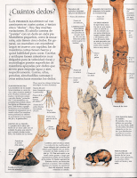 mamiferos 58