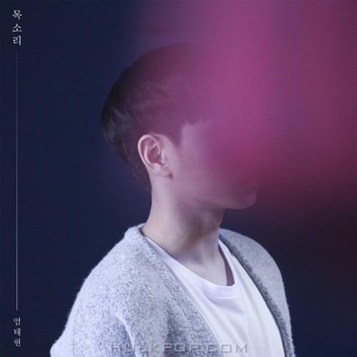 Uhm Tae Hyun – 목소리 – Single