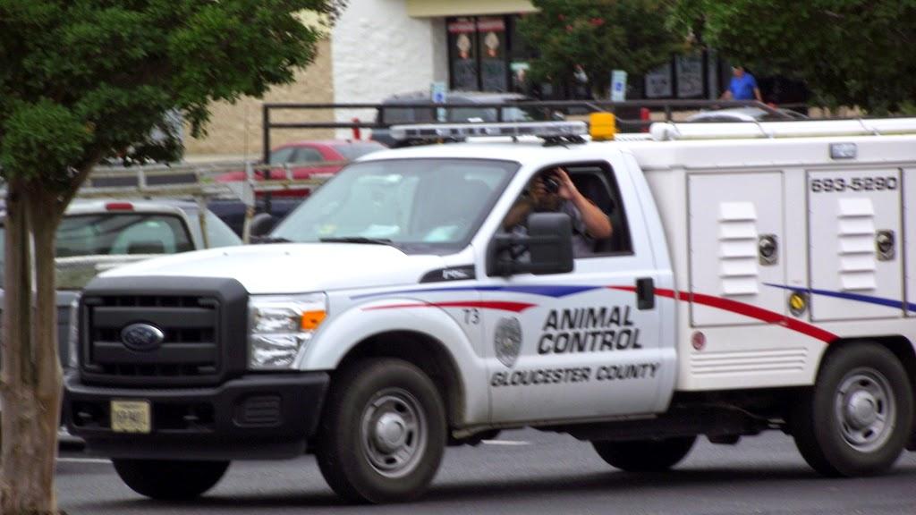 Gloucester VA Links and News: Gloucester, VA Animal Control
