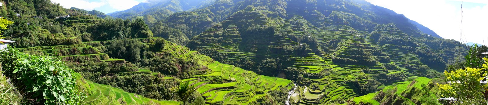 10 Most Famous Travel Destinations In Philippines | Panoramic view of the Banaue Rice Terraces ,Philippines