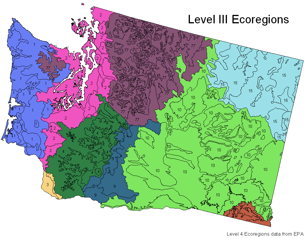 Conglomerate Thoughts Biomes Vs Ecoregions A Journey Of