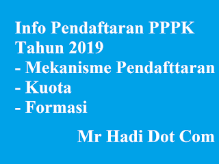 Mekanisme Pendaftaran PPPK Melalui sscasn.bkn.go.id Formasi dan Kuota