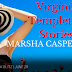 Book Blitz - Virginia Templeton Stories by Marsha Casper Cook  @agarcia6510  @mba3308