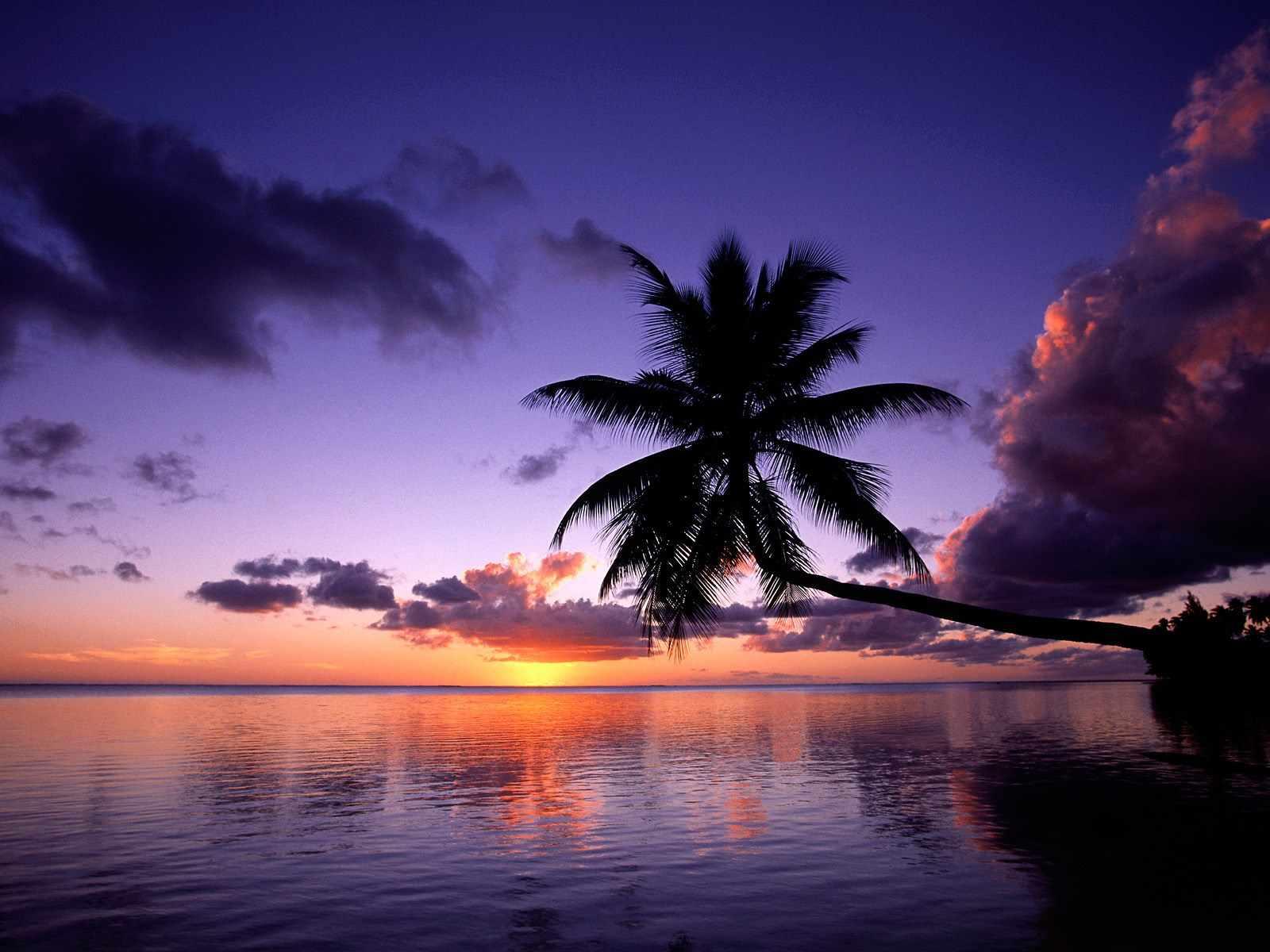 Imagenes De Paraísos Tropicales,playas Paradisíacas,beach