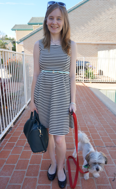 Jeanswest striped rita fit and flare dress belted alexander wang rocco bag