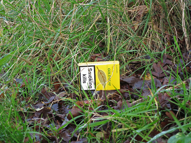 Abandoned Gold Leaf cigarette lying on dead, wet, brown leaves
