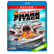 6-Headed Shark Attack (2018) BRRip 1080p Audio Dual Latino-Ingles