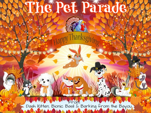 Happy Thanksgiving The Pet Parade Banner 2019