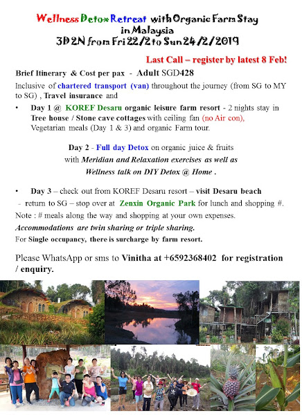2019 February Wellness Detox Retreat at Desaru Organic farm resort