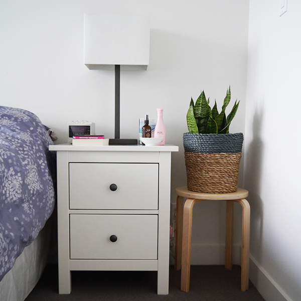 Snake plant in bedroom