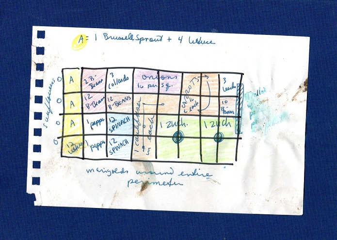 Dantes Wardrobe June 2011 – 4X8 Square Foot Garden Plan