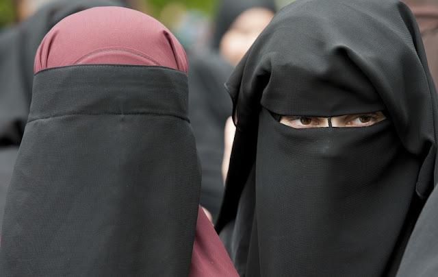 Austria's 'Burqa Ban' law