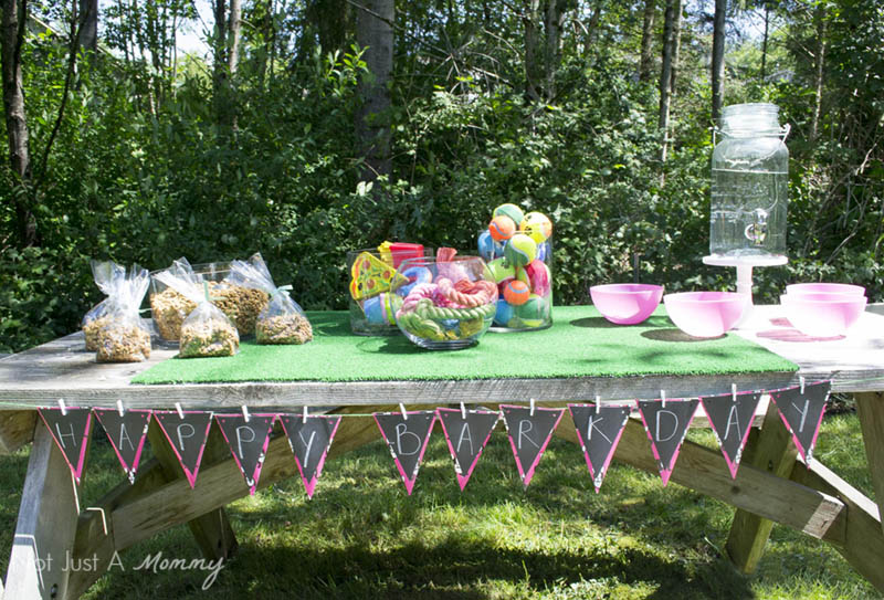 10 Tips For Hosting Your Dog's Barkday Party; party table