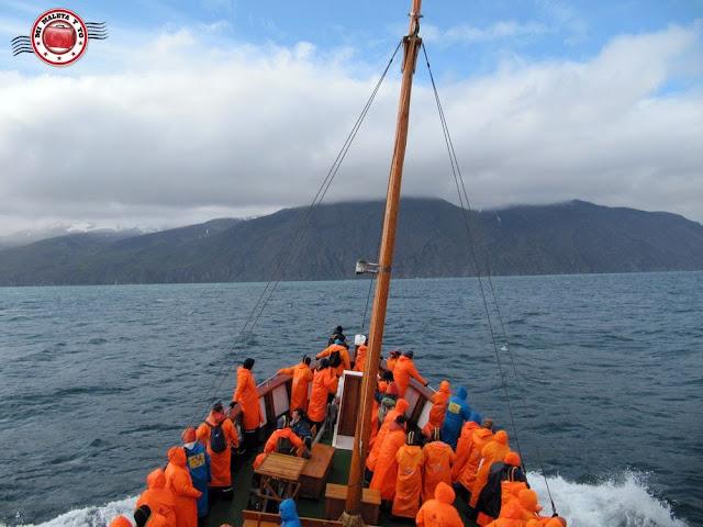Avistamiento de ballenas en Húsavík con North Sailing, Islandia