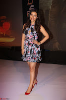Kyra Dutta in a Deep neck Small Dress at Shamanthakamani pre release function ~  Exclusive 110.JPG