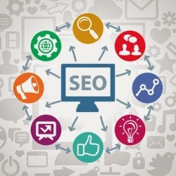 Premium SEO Packages and Professional Affordable Services