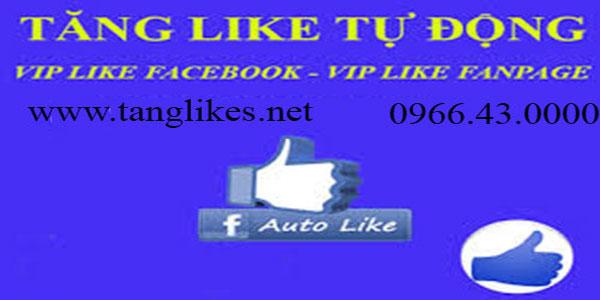 Tang like tu dong bai viet cho fanpage - facebook ca nhan la gi