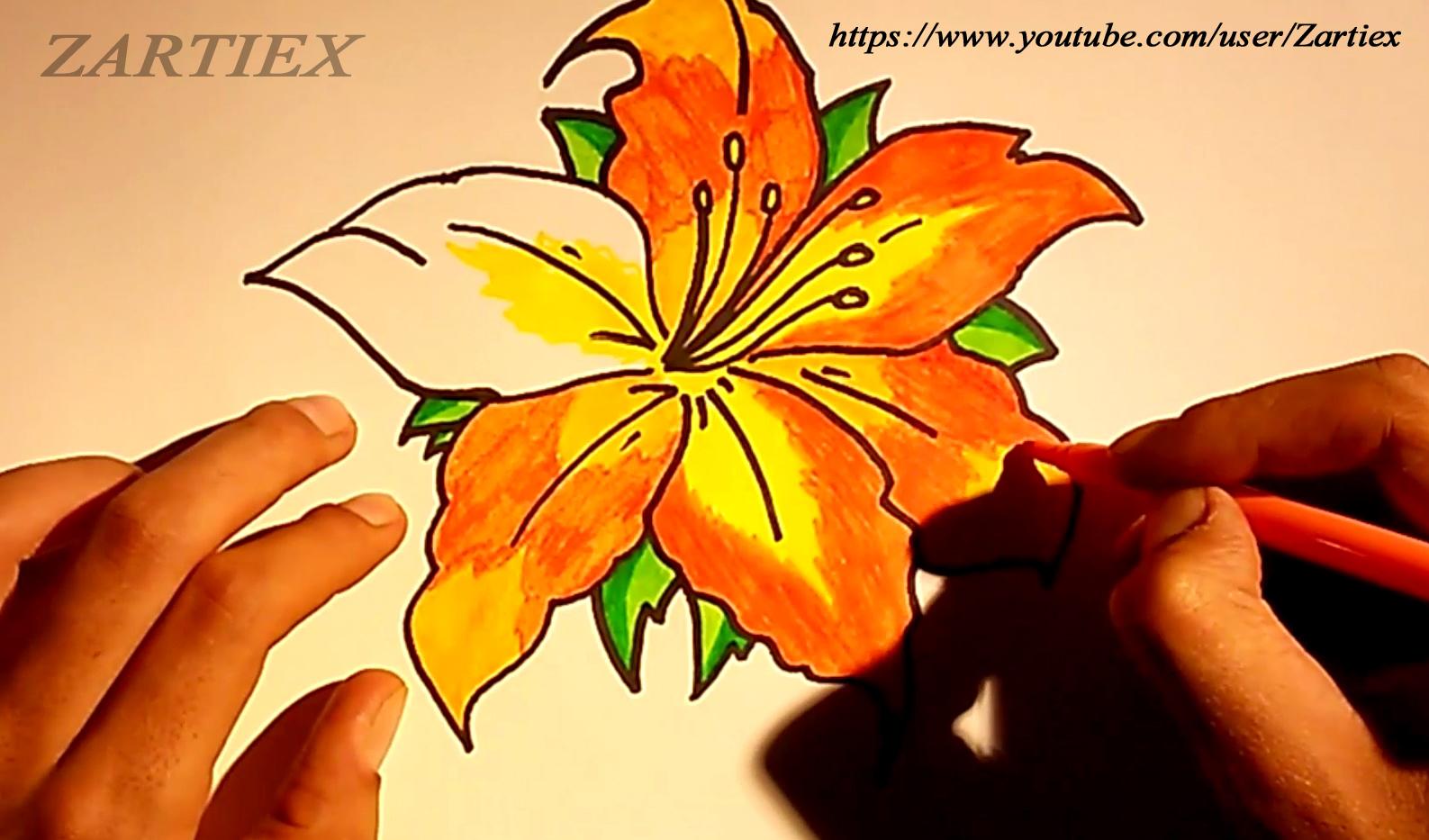 Dibujos Bonitos De Colores: Dibujos Para Colorear Y Pintar
