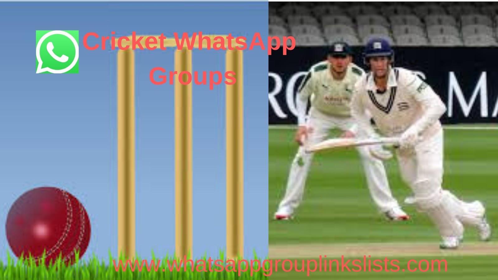 Join Cricket WhatsApp Group Links list