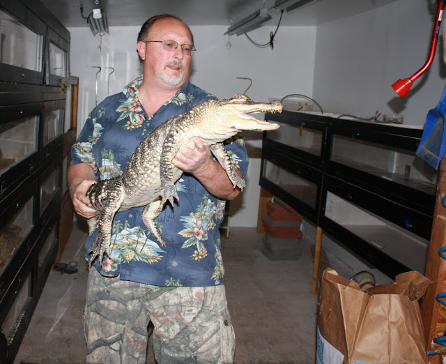 Gresham alligator gets new home with Reptile Man in Molalla