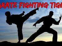 Game Karate fighting tiger 3D 2  v1.1 Mod Apk (Unlimited Power full version)
