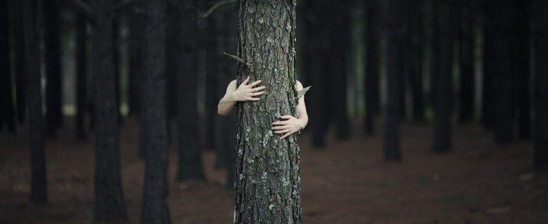 Mujer oculta tras un árbol