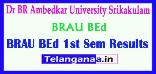 Dr BR Ambedkar University BRAU  BEd Exam Results