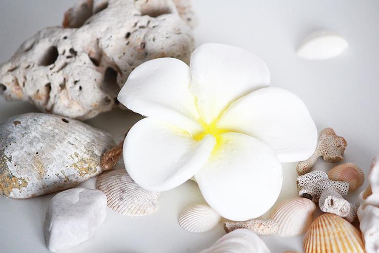 Thailand_beauty_shopping_lemongrass_house