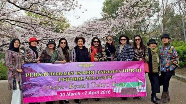 Pimpinan DPR Akui Istri-istri Anggota DPR Wisata ke Tokyo