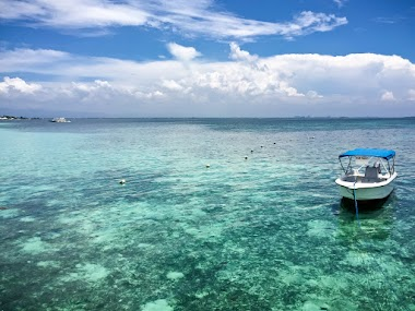 Our Route through the Coral Reefs of Cebu in Philippines