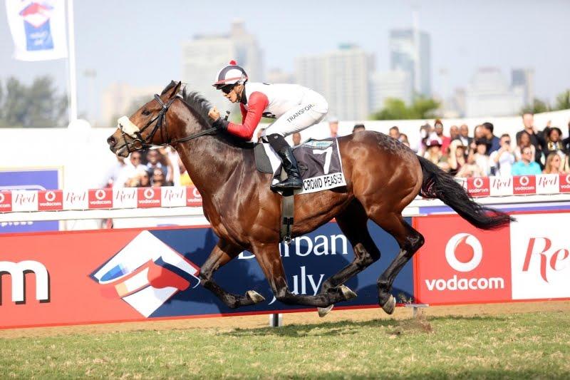 Crowd Pleaser - Vodacom Durban July 2018 contender