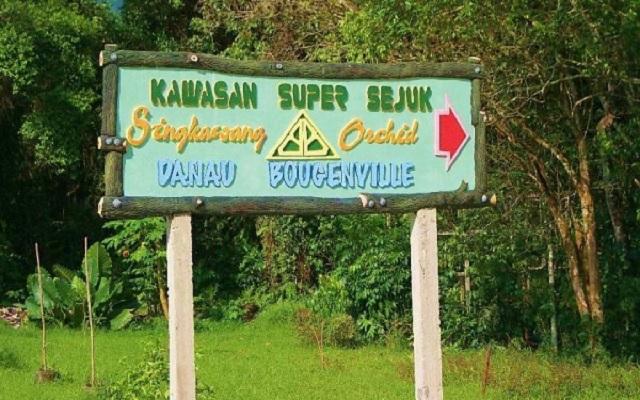 Kawasan Super Sejuk Singkawang dengan Taman Bukit Bougenville Yang Mempesona