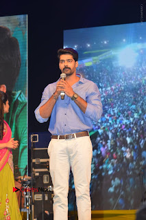 Nenu Local Audio Launch Stills  0093.JPG