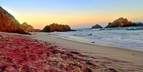 Playa Pfeiffer