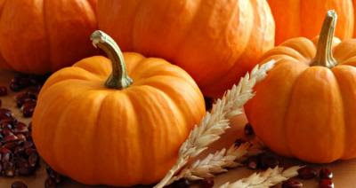 Extremely important function of the pumpkin is regulation of cholesterol and raising only good cholesterol levels in the blood.