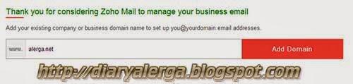memasukkan nama domain pada custom email